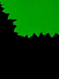 Visulahti